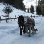 sneeuw ro 6